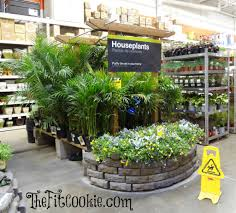 Earth Day-Inspired DIY Projects With The Home Depot | The Fit Cookie Projects Design Garden Benches Home Depot Stunning Decoration 1000 Pocket Hose Top Brass 34 In X 50 Ft Expanding Hose8703 Lifetime 15 8 Outdoor Shed6446 The Covington Georgia Newton County College Restaurant Menu Attorney Border Fence Fencing Gates At Fence Gate Popular Lock Flagstone Pavers A Petfriendly Kitchen With Gardenista Living Today Cedar Raised Bed Shed