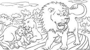 Coloring Pages Of Meerkat Lion Cubs
