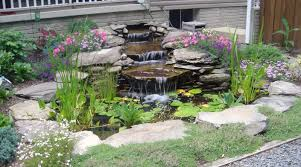 PondMart Pond Supplies Pond Kit Ebay Kits Koi Water Garden Aquascape Koolatron 270gallon 187147 Pool At Create The Backyard Home Decor And Design Ideas Landscaping And Outdoor Building Relaxing Waterfalls Garden Design Small Features Square Raised 15 X 055m Woodblocx Patio Pond Ideas Small Backyard Kits Marvellous Medium Diy To Breathtaking 57 Stunning With How To A Stream For An Waterfall Howtos Tips Use From Remnants Materials