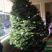 Delancey Street Christmas Trees Berkeley Ca by Wonderland Christmas Trees 11 Photos U0026 38 Reviews Christmas