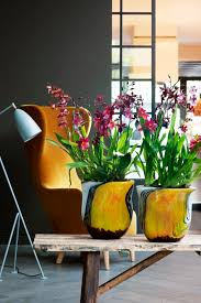 8 Tips How To Style Orchids In Your Home Decor 30s Magazine