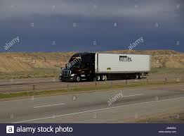 Black Freightliner Semi-Truck Pulling A White
