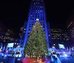 Rockefeller Plaza Christmas Tree 2014 by World Famous Christmas Tree At 75 Rockefeller Plaza