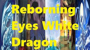 Yugioh Dragon Deck List by Reviving Eyes White Dragon Deck List Profile Youtube