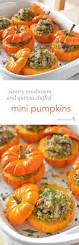 Muirhead Pecan Pumpkin Butter Dip Recipe by 279 Best Fall Images On Pinterest