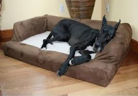 Extra Large Orthopedic Dog Bed by Top 10 Dog Mattresses For Large Dogs