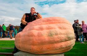 Worlds Heaviest Pumpkin In Kg by Talking Dutch Oh My Gourd Flanders Today