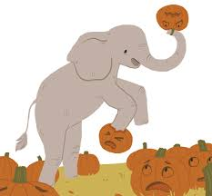 Pumpkin Picking Near Syracuse Ny by Zoo Animals To Play With Smash Pumpkins At Annual U0027squishing Of