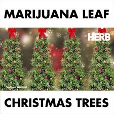 Christmas Tree Preservative Recipe by Herb Want A Weed Christmas Tree Go To Walmart