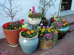 Absolutely Ideas Pot Gardening Contemporary Decoration Container