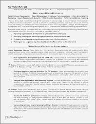 Retail Manager Resume Examples Best Of Management Resumes Samples