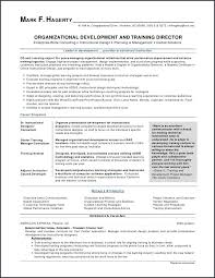 Business Analyst Resume Examples Luxury Business Analyst Resume
