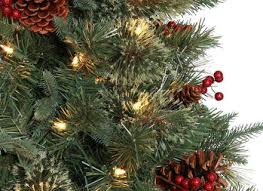 65 Ft Christmas Tree by 65 Ft Hayden Pine Potted Artificial Christmas Tree With 200 Fia Uimp