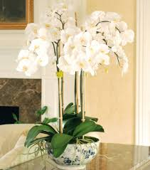 luxury artificial luxury orchid pot plant