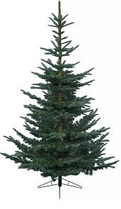 Lifelike Artificial Christmas Trees Canada by Clever Design Real Looking Christmas Tree Astonishing Ideas The