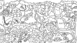 Full Size Of Coloring Pagesalluring Amazon Rainforest Pages Good 40 On Picture Page Large