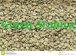 Green Arabica Coffee Beans Stock Illustration Of