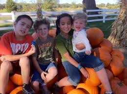Pumpkin Patches In Oklahoma by Carmichaels Pumpkin Patch Marniefernandez