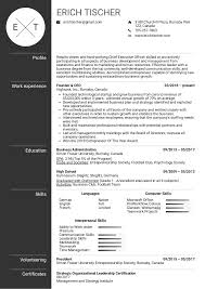 Resume Examples By Real People: CEO Resume Example | Kickresume Github Billryanresume An Elegant Latex Rsum Mplate 20 System Administration Resume Sample Cv Resume Sample Pdf Raptorredminico Chef Writing Guide Genius Best Doctor Example Livecareer 8 Amazing Finance Examples 500 Cv Samples For Any Job Free Professional And 20 The Difference Between A Curriculum Vitae Of Back End Developer Database