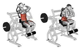 Captains Chair Leg Raise Bodybuilding by 100 Roman Chair Reverse Crunch Core Exercises Sparkpeople