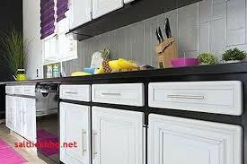 peinture meuble cuisine stratifié peinture porte cuisine 9n7ei com