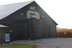 Pumpkin Patch Nashville Area by Just Piddlin Farm Provides Family Fun Kentucky Farm Bureau
