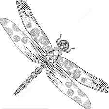 Zentangle Dragonfly Coloring Page From Category Select 21123 Printable Crafts Of Cartoons