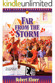 Far From The Storm Young Underground Book 4