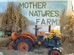 Pumpkin Patch Yuma Az Hours by Discover Arizona U0027s Best