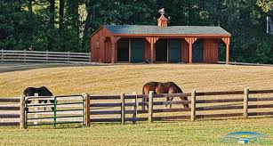 Shedrow Horse Barns | Shed Row Barns | Horizon Structures Barn With Living Quarters Builders From Dc House Plan Prefab Homes Livable Barns Wooden For Sale Shedrow Horse Lancaster Amish Built Pa Nj Md Ny Jn Structures 372 Best Stall Designlook Images On Pinterest Post Beam Runin Shed Row Rancher With Overhang Delaware For Miniature Horses Small Horizon Pole Buildings Storefronts Riding Arenas The Inspiring Home Design Ideas