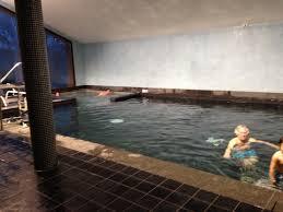 la piscine avec au fond à gauche le coin jaccuzzi picture of les
