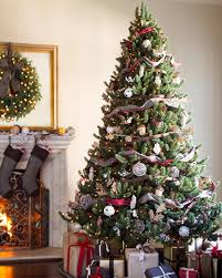 Types Of Christmas Tree Leaves by Vermont White Spruce Tree Balsam Hill