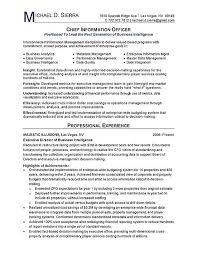 Chief Information Officer CIO Resume Example