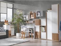 arbeitszimmer einrichten neu ideen einrichten klein