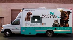 FENWICK KEATS Sponsors Mobile Adoption Van In Cooperation With ... 10 Best Places To Adopt A Dog Or Cat In Nyc Aspca Stock Photos Images Alamy Events Pinups For Pitbulls Animal Care Centers On Twitter Meet Adorable Dogs Cats The Worlds Of Aspca And Puppy Flickr Hive Mind Vintage Adorable Animals From Aspcas Historical Archive This Gowanus Aspca Building Sheltered The Brooklyn Bring Texas Animal Shelter Other Happy Tails A Second Chance Chandler Pictures Jestpiccom