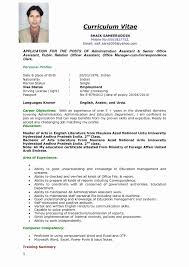 Resume Template Examples Elegant In English Sample Doc Best Skills A