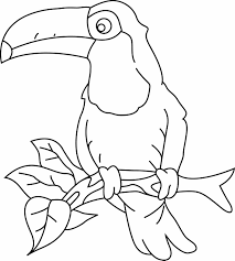 Toco Toucan Super Coloring Dads Wall Project