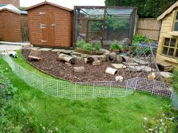 Pine Bedding For Guinea Pigs by Here Is My Guinea Pigs Outdoor Area They Come Out Here Each Day