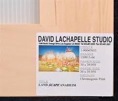 Landscape Anaheim By David Lachapelle