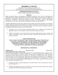 100 Agile Resume Business Analyst New Business Analyst
