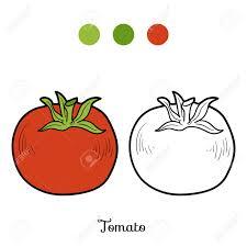 Tomate Illustration Dessinés à La Main Page à Colorier Image