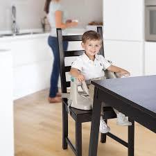 Ingenuity Chair Top High Chair - Emerson - Ingenuity - Babies