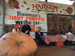 Heaviest Pumpkin Ever by Pumpkin Smashes Record For Largest Grown In Oregon Oregonlive Com