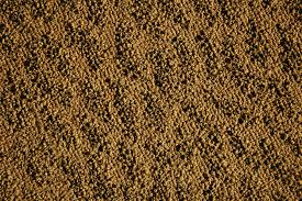 This Carpet Texture Is A Very Classic Bumpy Nubby Loop Pile