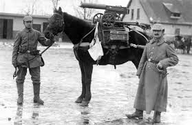 Germanys Most Decorated Soldier Ever by World War I In Photos Animals At War The Atlantic