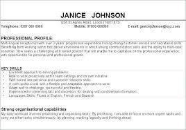 Example Of Personal Resume Profile Statement Me