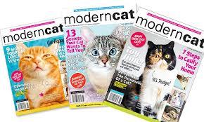 modern cat subscribe modern cat