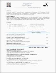 Resume Technical Skills List Examples Limited Design