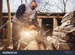 Royalty-free Cutting Wood With Chainsaw At Backyard,… #629479148 ... Detail Of Young Man Chopping Wood In His Backyard Stock Photo 6158 Nw Lumberjack Rd Riverdale Mi 48877 Estimate And Home Only Best Budget Tree Service Changs Changes Our Is One Loading Wood Logs To Wheelbarrow Video Landscape Lumjacklawncare Twitter Amazoncom Camp Chef Overthefire Grill With Sturdy The Urban Sturgeon County Bon Accord Gibbons Bash Themed Cookies Pinterest Inside The Quest To Become Greatest World Cadian Show Epcot Youtube