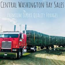 Central Washington Hay Sales - Agricultural Service - Thorp ...